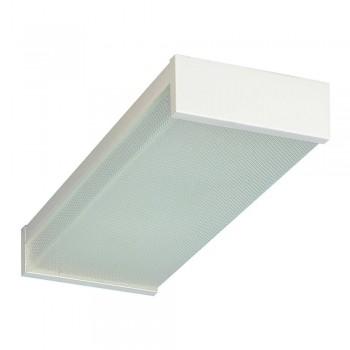 2ft Closed Fluorescent 2lt C/light White