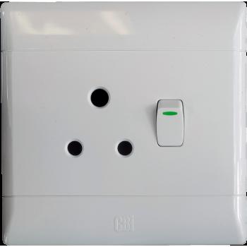 Switch Plug Single Cbi