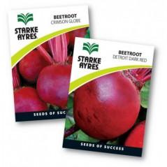 Seed Beetroot