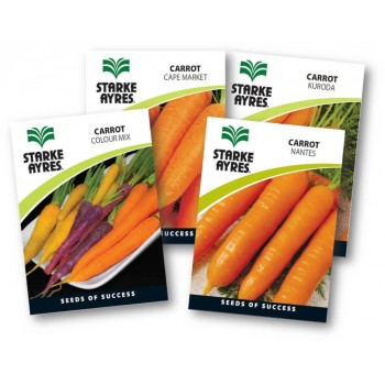 Seed Carrot