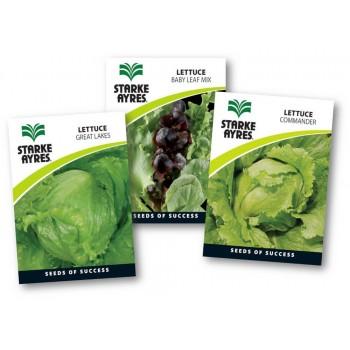 Seed Lettuce