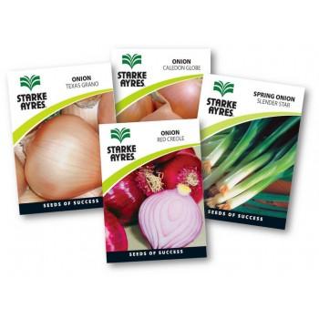 Seed Onion