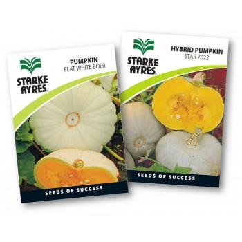 Seed Pumpkin