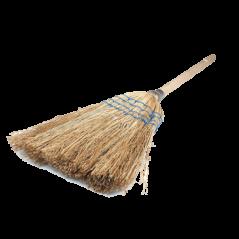 Broom Corn